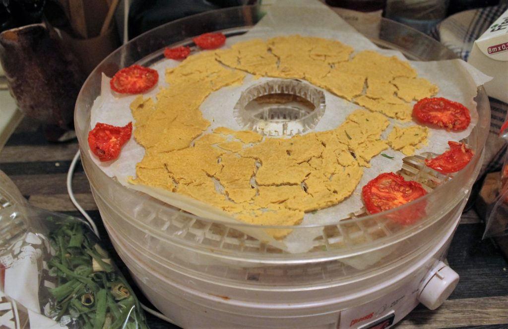 Dehydrating hummus and tomatoes. The scallions are already done and in the baggie at the bottom left.
