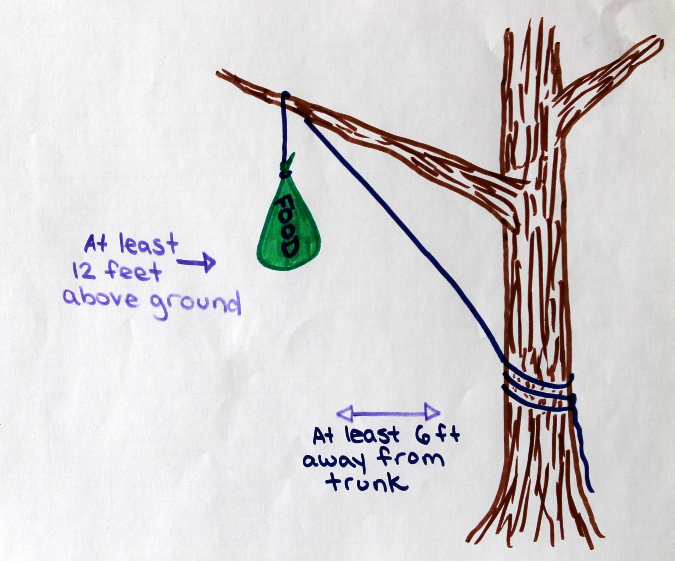 5 Ways to Hang a Bear Bag - Mom Goes Camping