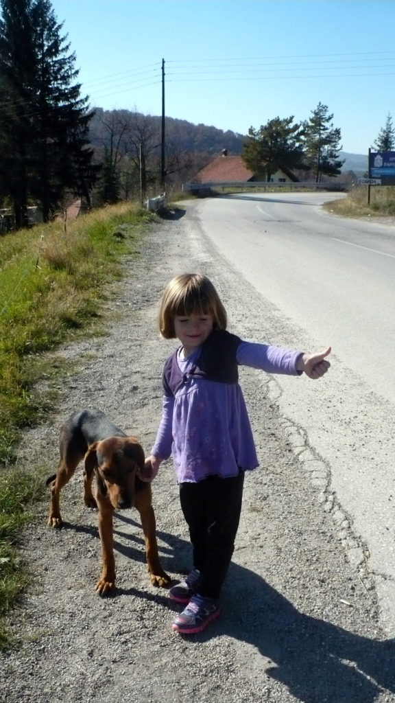 Isabel hitching a ride in Serbia. A village dog decided to wait with us. :)