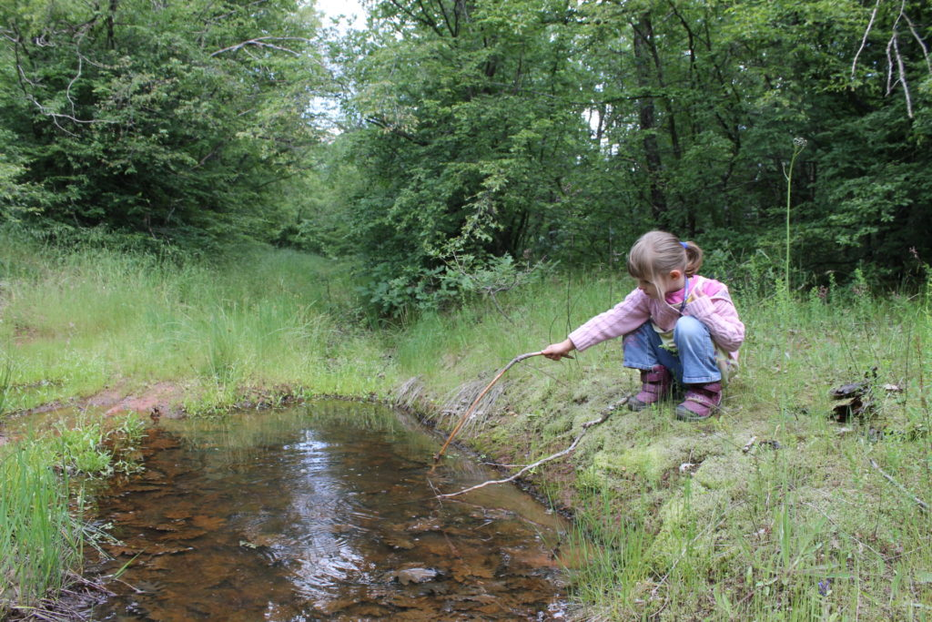 Getting muddy while exploring all the organisms that live in this puddle.