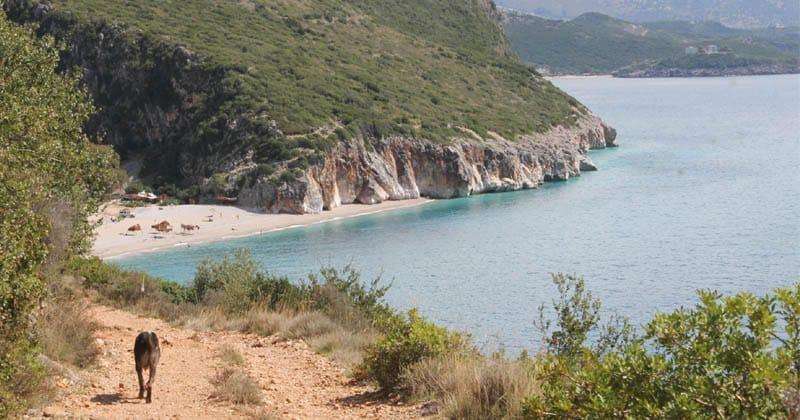 gjipe beach camping