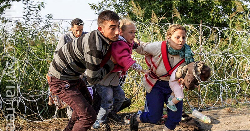refugees fleeing over the Serbian-Hungarian border