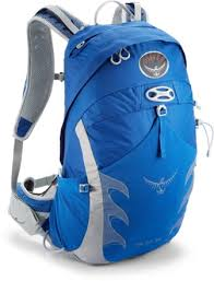 The Osprey Talon 22 liter is a popular hiking day pack for campers. You can buy it here for $60