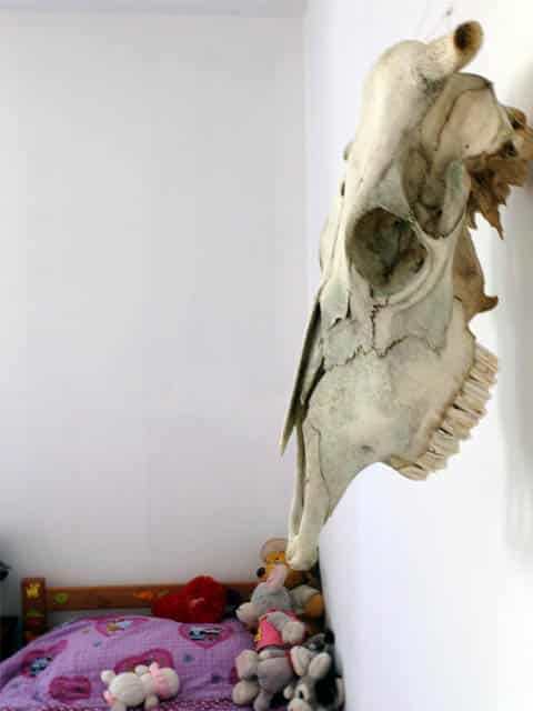bones in girls bedroom