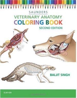 vet anatomy coloring book