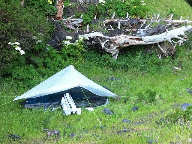 tent pitched with trekking poles