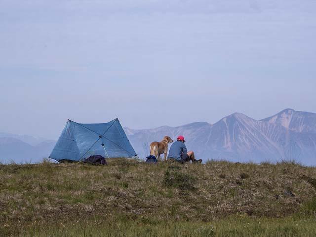 ZPacks Duplex trekking pole tent