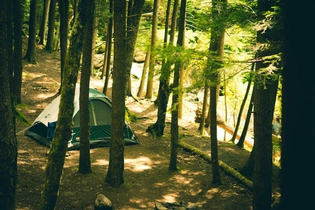 camping in the shade