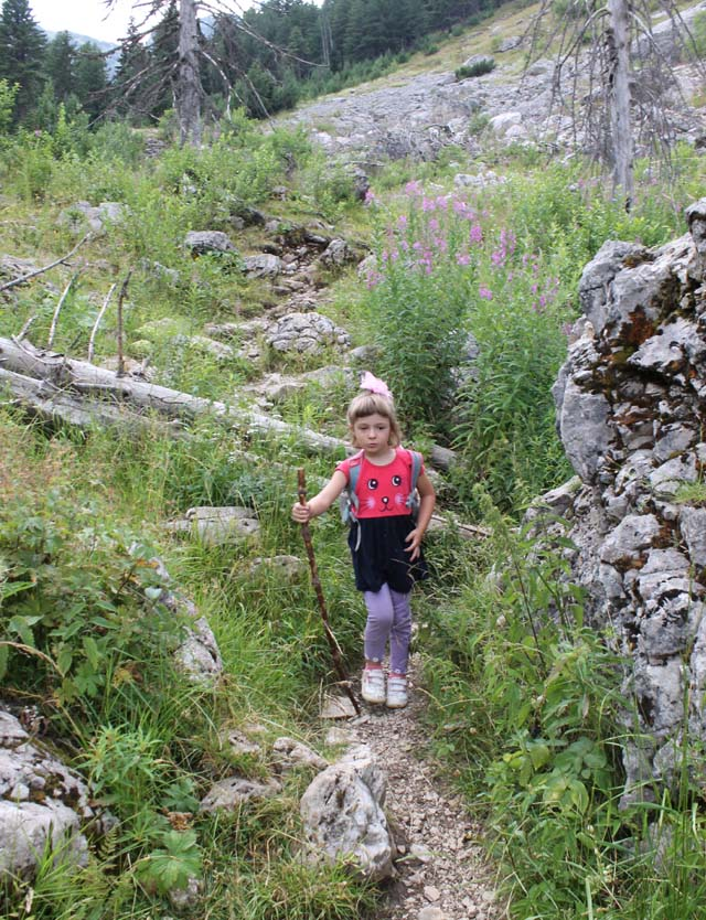 planning backpacking trip with kids