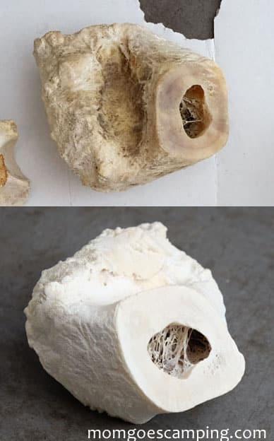 degreased vertebrae