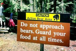 bear canister vs Ursack