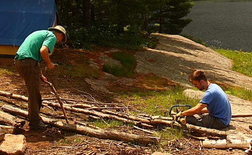 using a camping saw on large fallen trees