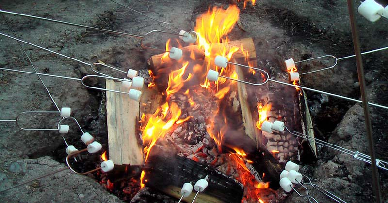 best marshmallow roasting sticks