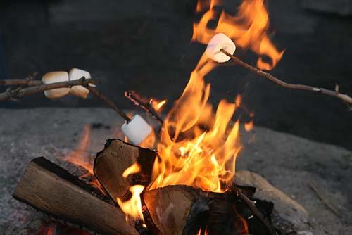best sticks for roasting marshmallows