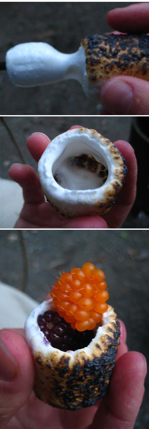 campfire marshmallow cups