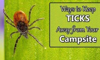 keep ticks away from campsite